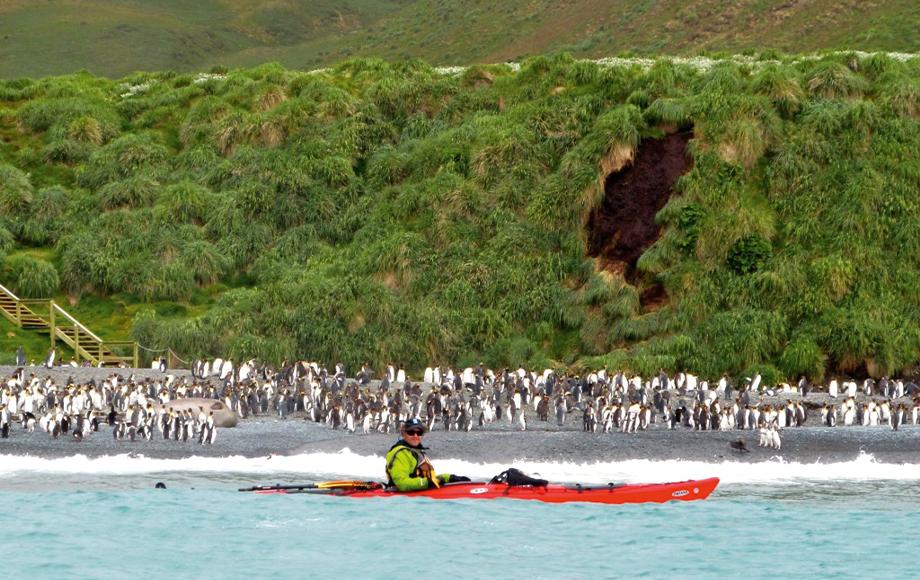 Kayaking at Macquarie Islands