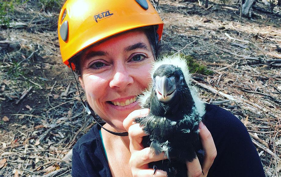 President of KIWN Kate Welz holding Glossy Black Cockatoo