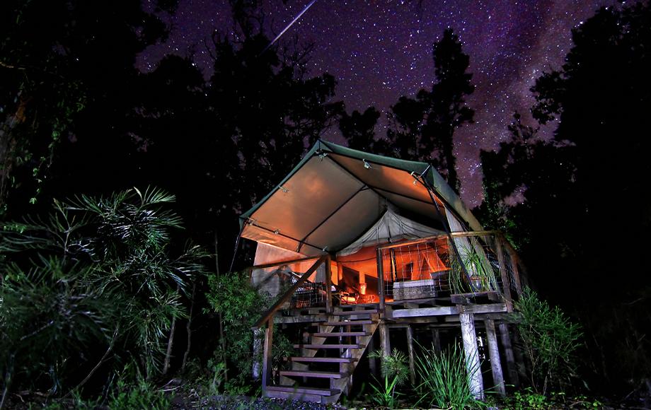 Paperbark Camp Tent at night