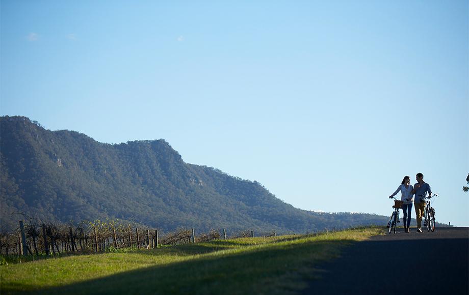 Mountain Biking at Spicers Vineyard Estate